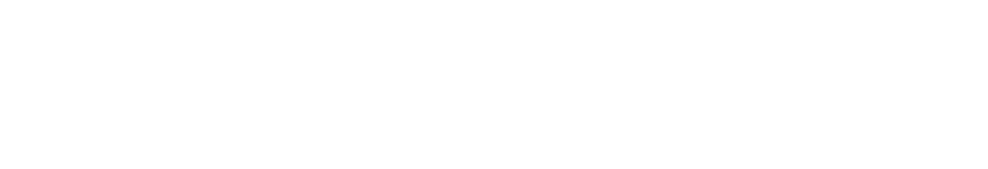 divorce-force-logo-white